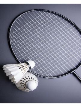 badminton-and-shuttlecock
